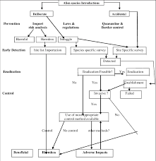 Alien Chart Flow Chart Of Options To Consider When Addressing Alien