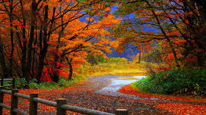 Fall HD Desktop Wallpaper Background ...