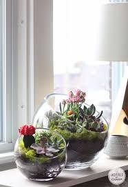 Small Picture Best 20 Indoor succulent garden ideas on Pinterest Indoor