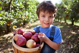 Image result for fall kids pictures