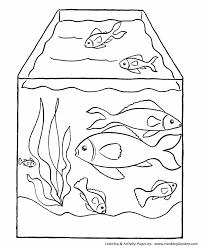 Small Picture Pet Fish Coloring page Fish Tank Desenhos Pinterest Pet