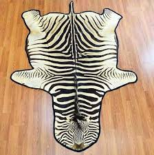 animal skin rugs for south africa at taxidermy s decor zebra rug compressed