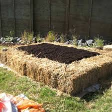 Small Picture Raised Garden Bed Design Plan Raised Bed Garden Plans In Raised Garden