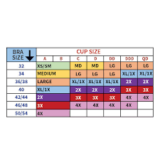 Rhonda Shear Size Chart Inspirational Genie Bra Brights Set