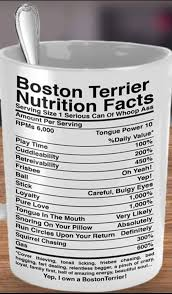 boston terrier nutrition facts