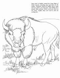 Native Americans Coloring Pages For Kids With American Color Fresh
