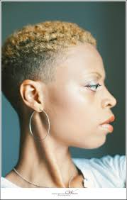 Short Natural Hair Style For Black Women 451 best natural hair inspiration images short 5563 by wearticles.com