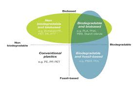 What Are Biodegradable Plastics The Need For A Clarified
