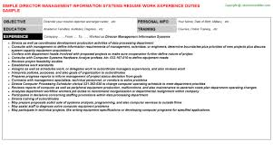 information systems analyst resume  seangarrette codirector management information systems resume  director management information systems   information systems analyst resume