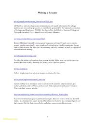 Professional Reference Letter Template Word Samples