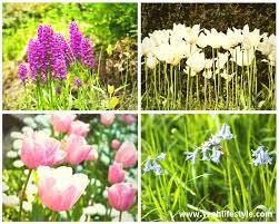 national trust biddulph grange gardens stokeont staffordshire flowers