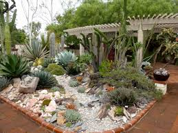Small Picture Best 25 Large Cactus Garden Design Pacific Horticulture