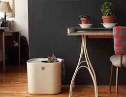 Best Apartment Litter Box Gallery - Moder Home Design - zeecutt.us