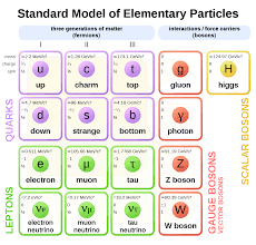 Elementary Particle Wikipedia