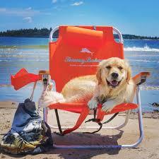 amazing orange cvs beach chairs with dog company on seat
