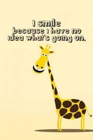Funny Giraffe Quote Giraffes Pinterest Funny Lol And Custom Giraffe Quotes