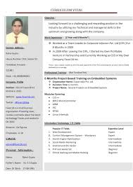 Effective Resume Examples Of Successful Resumes Nicetobeatyoutk 52