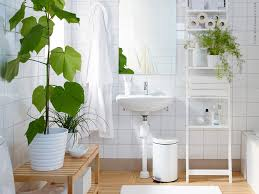Image result for plant in bathroom