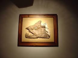 antique wood picture frames. Wood · Custom Picture Frame - Framed Fossil In Antique Pine Frames