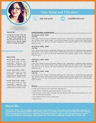 Best Resumes Formats Best Formats For Resumes Best Resume Formats