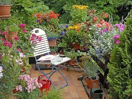 Small Picture Gardening ideas for balconies patios courtyards Saga