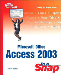 infotech services group microsoft office access 2003 in a snap by microsoft office access 2003 in a snap