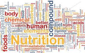 Lsu School Of Nutrition And Food Sciences