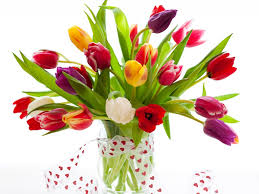 Image result for pictures of flowers