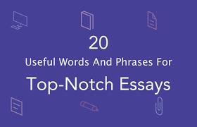 Custom Essay Writing Online   Sugar Cane  useful essay phrases in