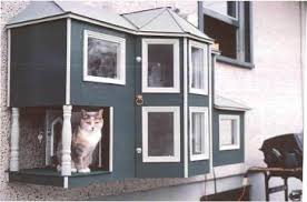 myadmin » howtodiy woodplanproject » Page building cat house outside