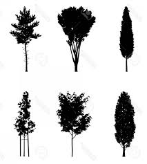 Photostock Vector Vector Illustration Of Tree Silhouettes For