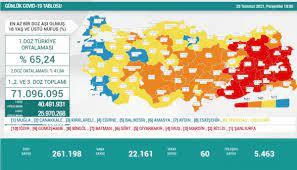 Bugünkü vaka sayısı kaç, kaç kişi öldü? 29 Temmuz koronavirüs tablosu
