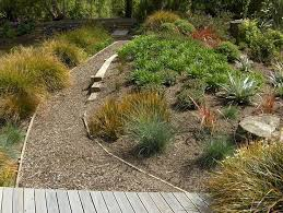 Small Picture 128 best New Zealand Garden images on Pinterest Native gardens