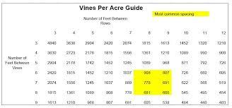 Vine Spacing Chart Enoviti Vine Density For Our Vineyard