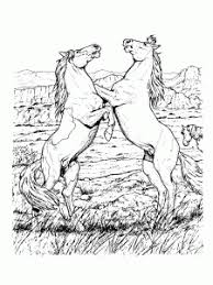 Looking for horse coloring pages and cute pony pictures for girls and boys of all ages to color? Horses Free Printable Coloring Pages For Kids