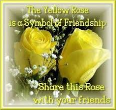 Beautiful Roses With Friendship Quotes Best of 24 Best States I've Visited Images On Pinterest Quote Friendship