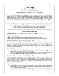 Sample Senior Project Manager Resume Senior Construction Project ...