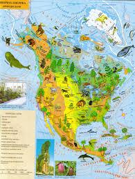 Конспект презентация урока по географии для класса Природные  hello html m223ca571 jpg hello html m5ecd161b jpg Северная Америка