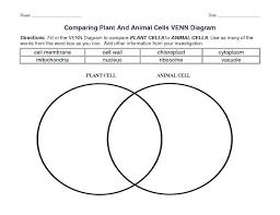 Cell Venn Diagram Gudu Ngiseng Blog Plant Cell And Animal Cell Venn Diagram Wiring