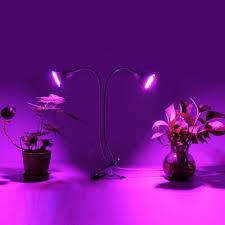 Growing Bonsai Under Led Lights 60w Dual Head Plants Led Grow Light Bulb Clip Desk