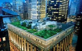 intensive and extensive green roofs a
