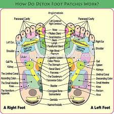 the foot patches are also said to work according to the principles of foot reflexology