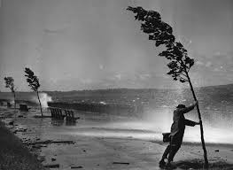 Image result for man withstands hurricane winds