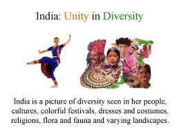 best unity in diversity essay ideas diversity  culture diversity in essay unity diversity essay