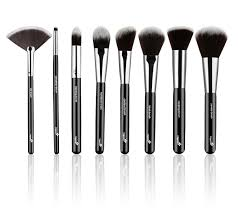 picture of essential 8 face makeup brushes set