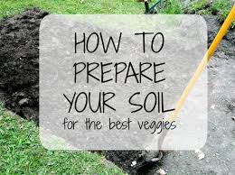 preparing your soil how to guide