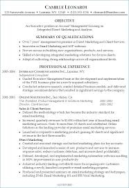 Resume Professional Summary Examples Publicassets Us