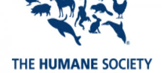 humane society logo png. Plain Png Humane Society Logo Png Wwwpixsharkcom Images  Throughout Png