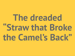 Risultati immagini per the straw that broke the camel's back