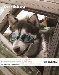 2018 subaru dog commercial. exellent commercial subaru outback magazine ad 2011 dogs like to stick their head out the  window intended 2018 subaru dog commercial s